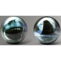 Fun Ball Shark